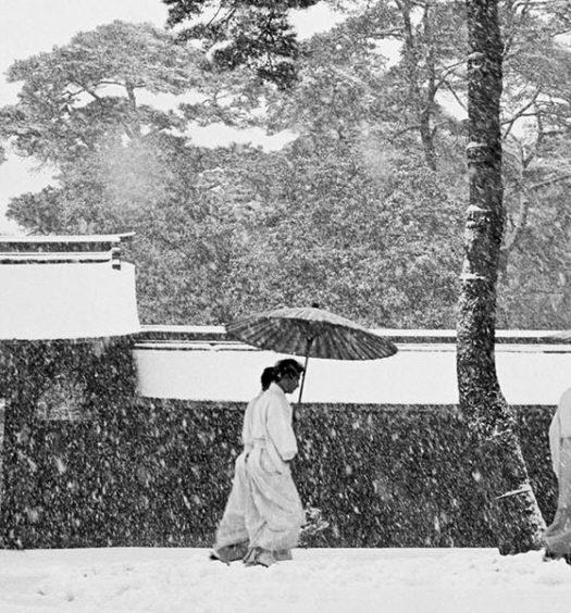 "Particolare di ""Courtyard of the Meiji shrine. 1951 - Tokyo"" di Werner Bischof"