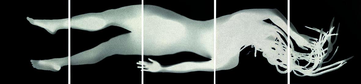 Henri Foucault: Satori WS n. 5 (2015 fotogramma e spilli in acciaio inox, cm 250 x 60)
