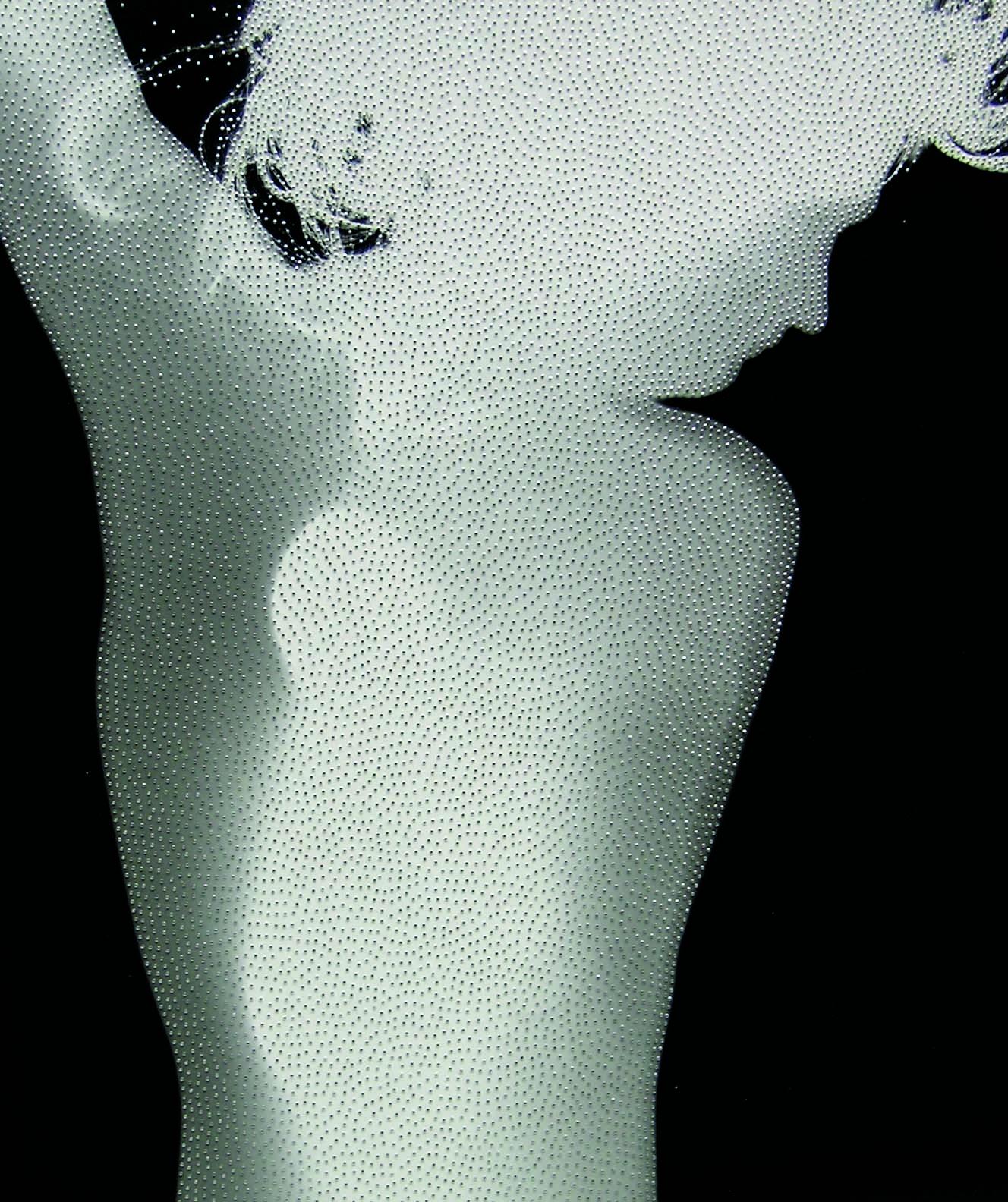 Satori n. 17 (2014 fotogramma e spilli in acciaio inox, cm 50 x 60)